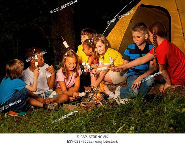 Campers sitting with marshmallow near bonfire