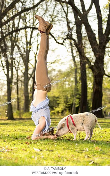 Woman doing headstand with piglet in park