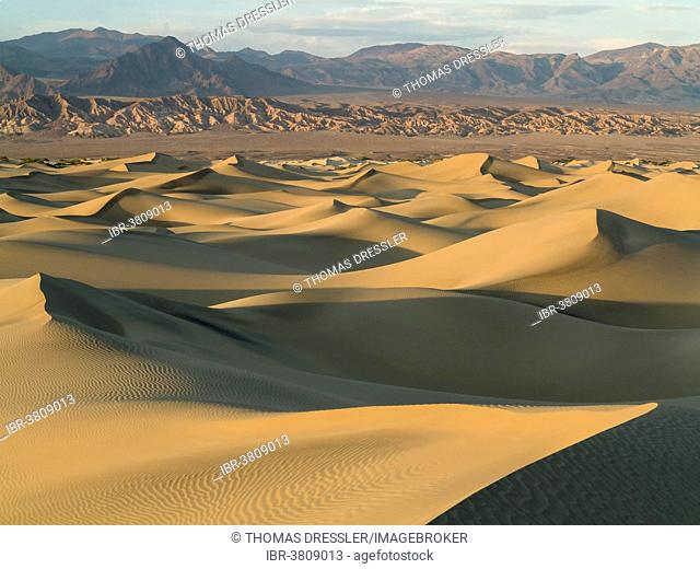 Mesquite Flat Sand Dunes in the evening light, Amargosa Range in the back, Death Valley, Death Valley National Park, California, USA