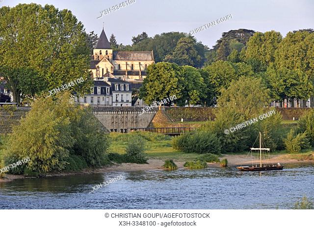 the Loire River at Amboise, Touraine, department of Indre-et-Loire, Centre-Val de Loire region, France, Europe