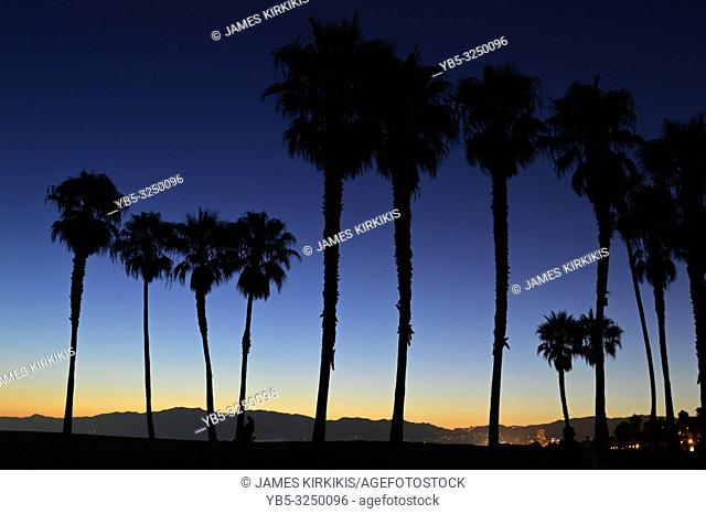 A sunset renders palm trees in silhouette on the California coast