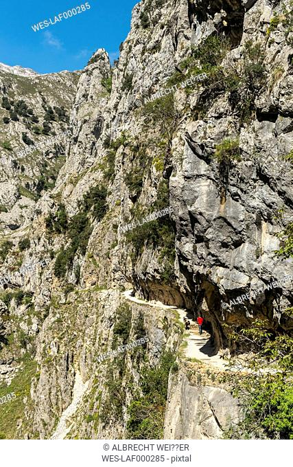 Spain, Asturia, Picos de Europa National Park, Ruta del Cares, Trail from Poncebos to Cain