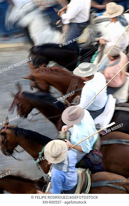 'Saca de las yeguas' festival, town of Almonte, province of Huelva, Andalusia, Spain. Dating back to 1504, every 26th of June