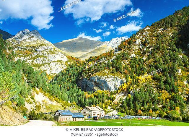 Forest and mountain. San Nicolas de Bujaruelo. Bujaruelo Valley. . Pyrenees, Huesca, Spain, Europe