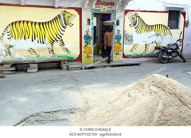Workman enters building btween wall motif of tigers, Udaipur, Rajastan, India