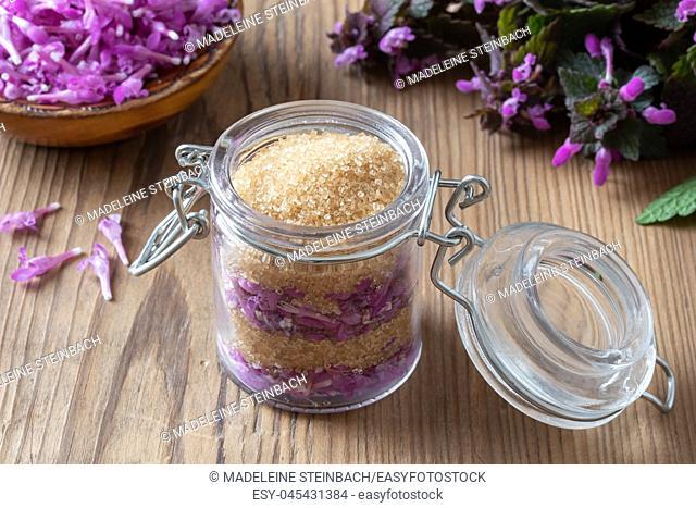 Preparation of homemade syrup from fresh purple dead-nettle flowers and cane sugar
