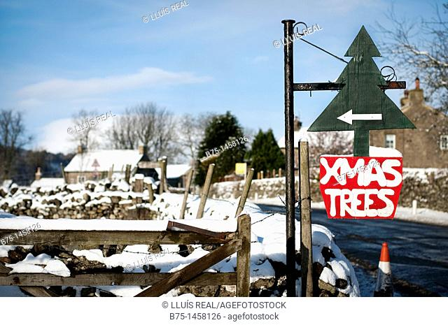Christmas image announcing sale of Christmas trees in the snowy village of Starbottom, Yorkshire Dales, England UK