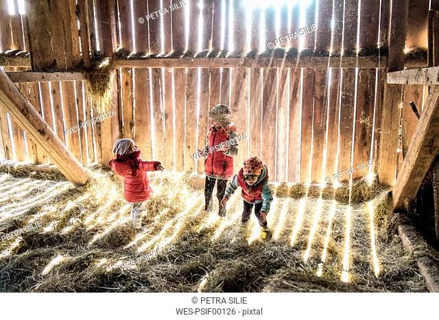 Three little girls playing together in a hey barn