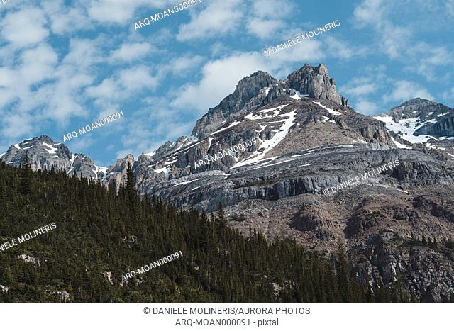 Majestic view of mountain peak and forest, Canadian Rockies, Plain of Six Glaciers, Alberta, Canada