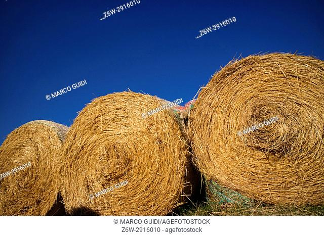 Stubble pressed straw for animals during the winter season