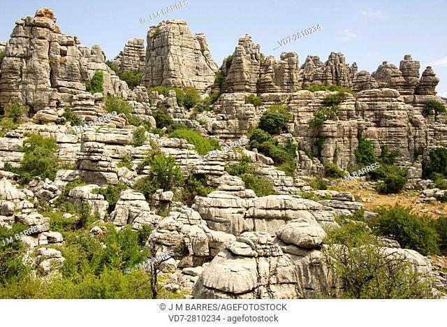 Karst in limestones. El Torcal de Antequera World Heritage, Malaga, Andalusia, Spain