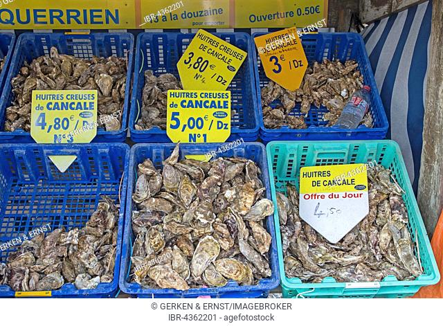 Fresh oysters for sale, Cancale, Brittany, France