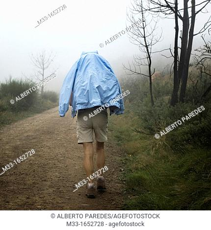 Pilgrims walking in Lugo province  Galicia  Spain  The WAY OF SAINT JAMES or CAMINO DE SANTIAGO following the French Route