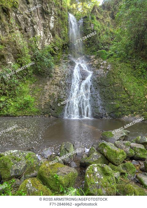 Paranui Falls in AH Reed Memorial Park, Whangarei, Northland, New Zealand. High Dynamic Range Images