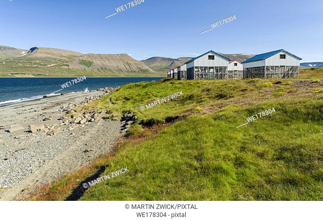 Typical huts for drying fish at the shore of fjord Dyrafjoerdur. The remote Westfjords (Vestfirdir) in north west Iceland