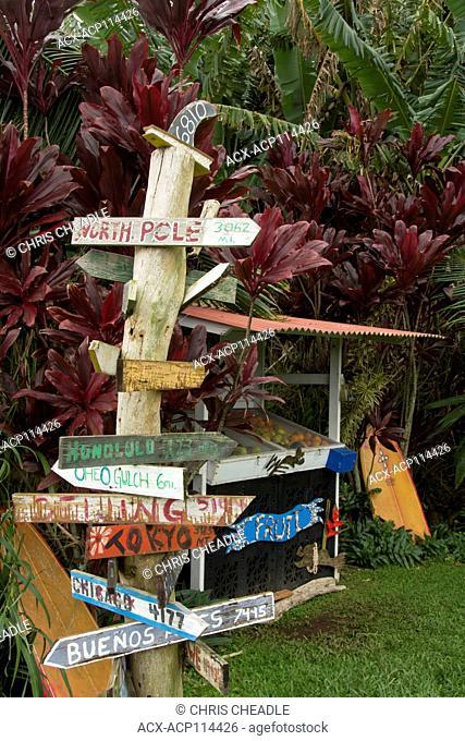 Roadside fruit stand, Maui, Hawaiian Islands, USA