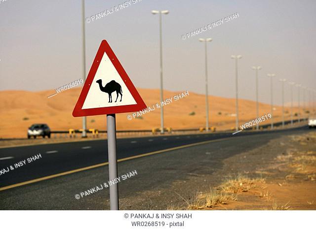 Roads in the desert