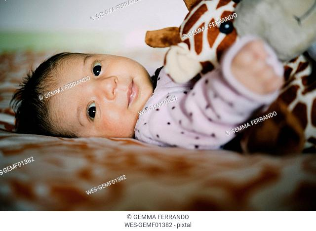 Happy newborn baby girl with a plush giraffe