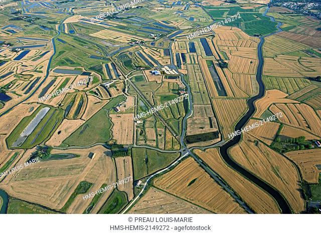 France, Vendee, La Barre de Monts (aerial view) Daviaud