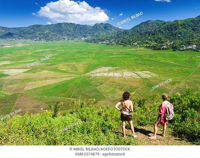 Lingko Spider web rice fields. Ruteng. Flores island. Indonesia, Asia