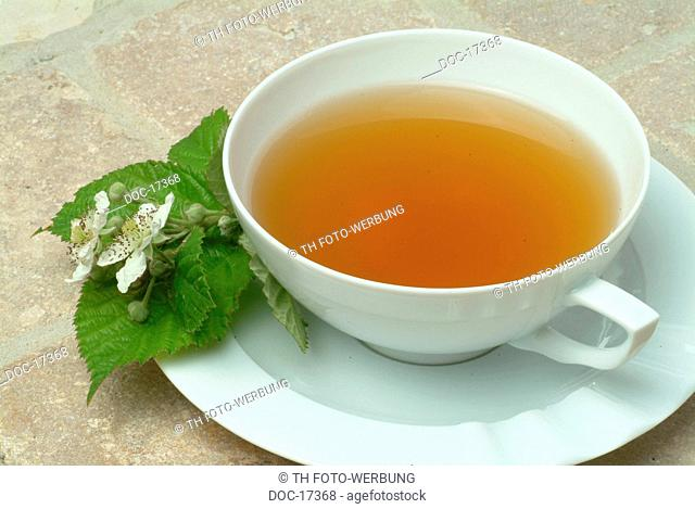 medicinal tea - herbtea - te - leaves and blossoms of the blackberry- used as medicinal plant - herb - Rubus fructicosus - Mora di rovo te