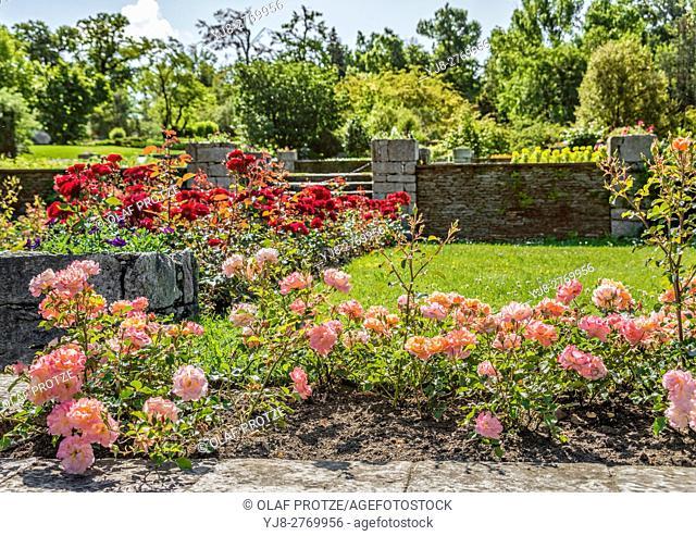 Garden of Villa Taranto at Lago Maggiore, Pallanza, Piemont, Italy