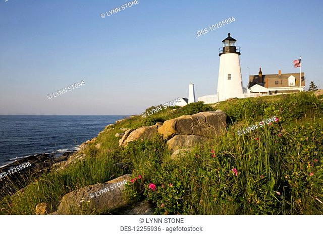 Pemaquid Point Light and wild roses, Pemaquid Point Peninsula, near New Harbor; Maine, United States of America