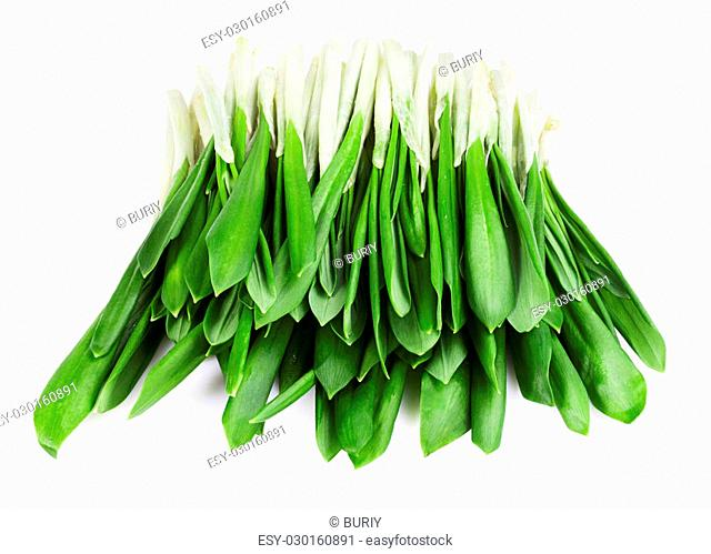 green wild garlic isolated on the white background. Clipping Path