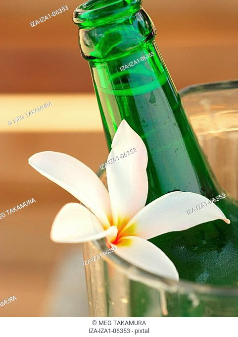 Close-up of a beer bottle and a flower in a jug