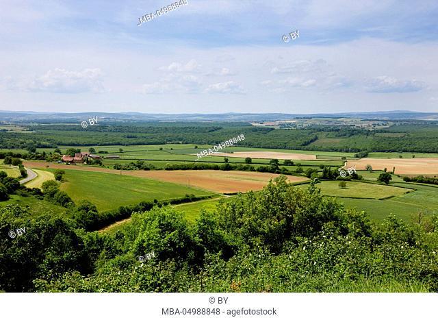 Scenery in Burgundy
