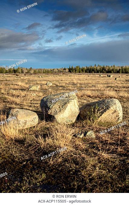 Erratic rocks in grassland Alvar on Barrie Island, Manitoulin Island, Ontario, Canada
