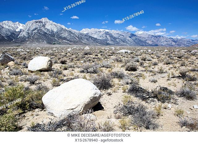 The Sierra Nevada's tower above the desert Owens Valley floor in Central California