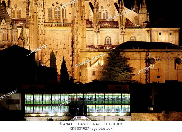 Salamanca cathedral from the other bank of the Tormes river-Down, the modernist-art decó museum: Casa Lis