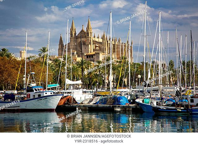 Boats in the marina below Cathedral of Palma de Mallorca, Spain
