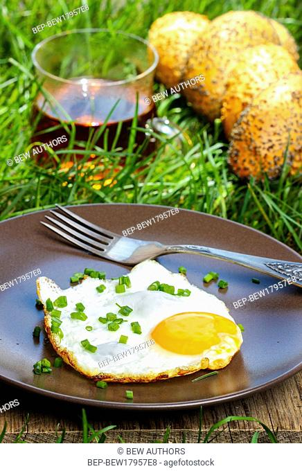 Breakfast on the grass. Fried egg on brown plate