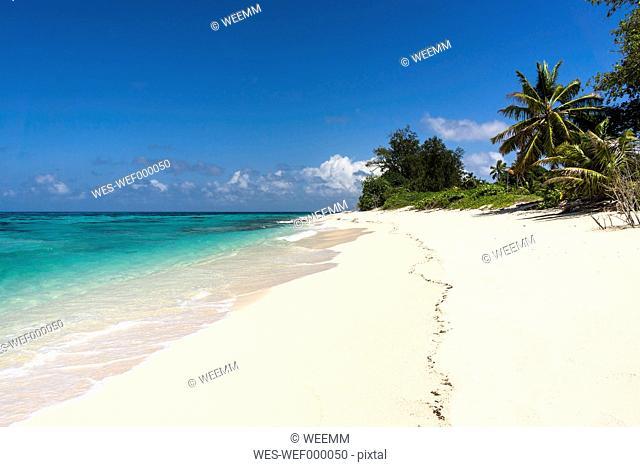 Seychelles, Northern Coral Group, Denis Island, Beach