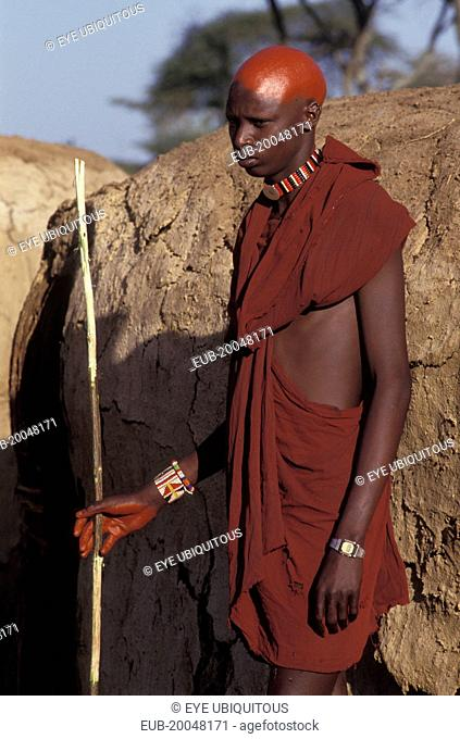 Portrait of a Maasai moran with recently shaved heads covered with ochre which signifies their coming into manhood during an initiation ceremony of their age...