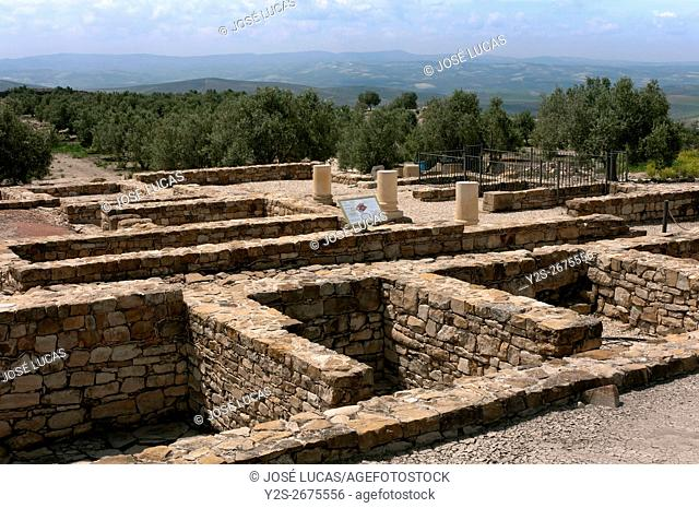 Torreparedones, iberian-roman archaeological park, Market (Macellum)-1st century, Baena, Cordoba province, region of Andalusia, Spain, Europe