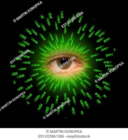 one eye watches the data transmission in a computer systems