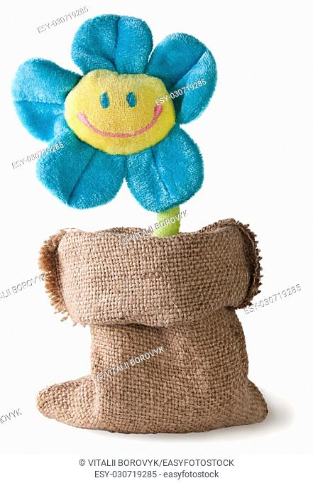 Plush flower in sack isolated on white background