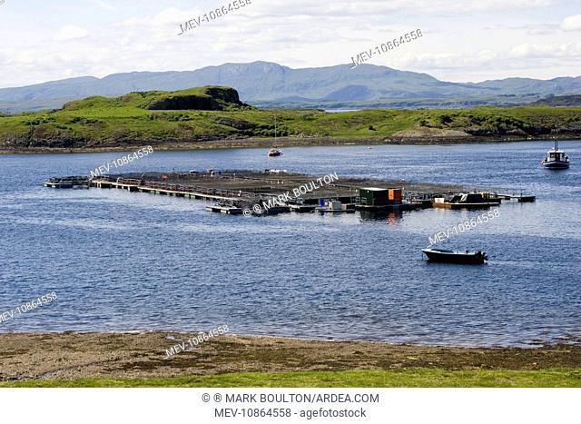 Salmon farm near Craignure, Isle of Mull, Scotland