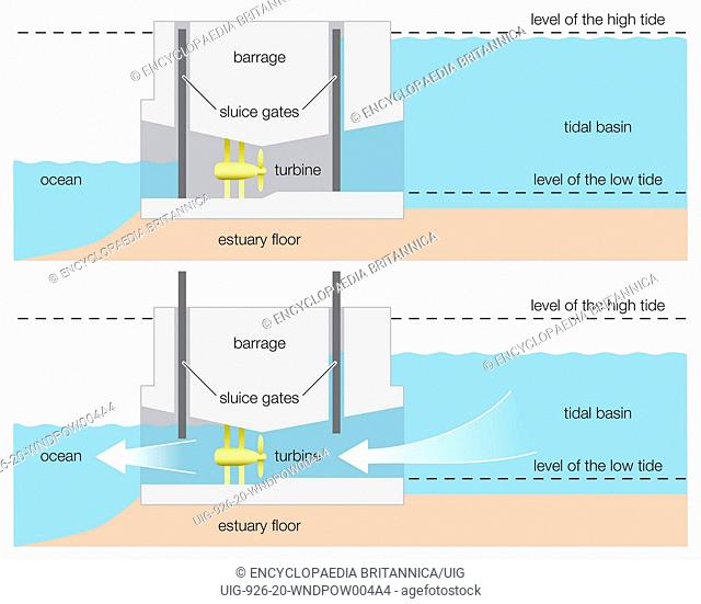 Diagram of a tidal power barrage, wind, renewable energy, alternative energy, hydroelectricity, hydroelectric power, renewable resource