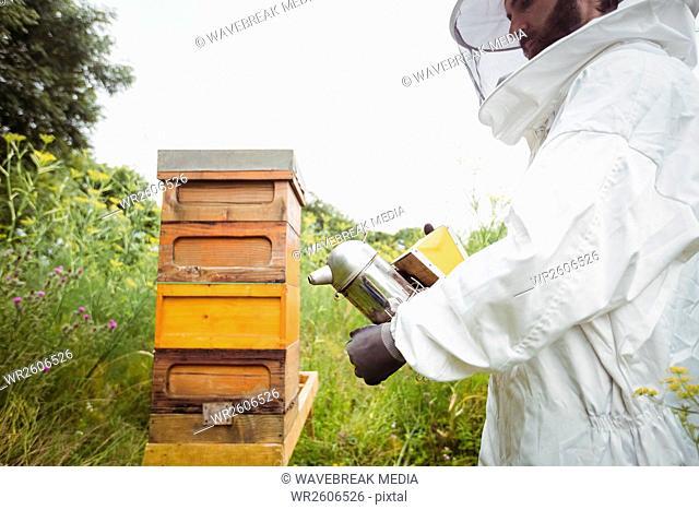 Beekeeper using bee smoker