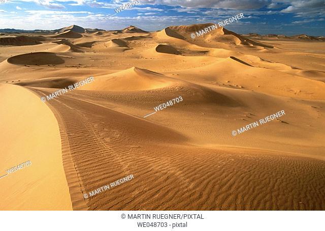 Sand dunes, desert. Sahara, Grand Erg Oriental. Algeria. November