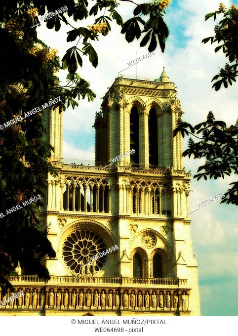 Notre Dame de Paris Cathedral. Considered as one of the finest examples of French Gothic architecture. Built between 1163 - 1345 over the original christian...