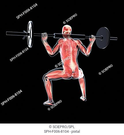 Weightlifter, computer artwork