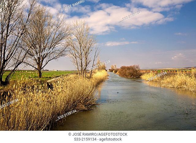 Cigüela river in Villarrubia de los Ojos. Ciudad Real. Castilla la Mancha. Spain
