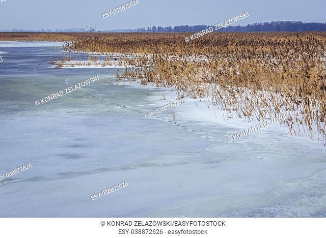 Frozen Narew River in Waniewo village, Wysokie Mazowieckie County in Podlaskie Voivodeship of northeastern Poland