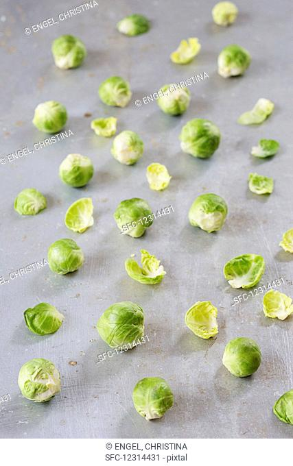 Strewn brussels sprouts on a metal sheet