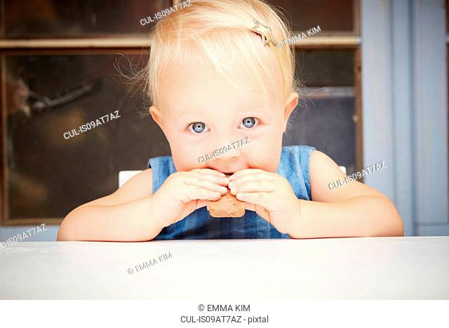 Portrait of cute blonde baby girl looking at camera eating chocolate biscuit